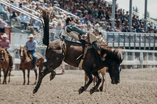 Photo of 5 Least-Known Secrets about Rodeo One Ought to Know