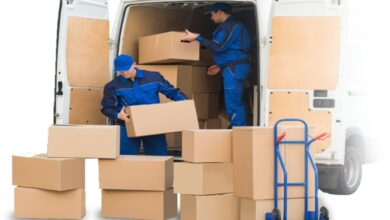 Photo of Everything You Need To Know About Pre-Move Surveys